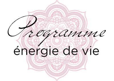 Energie de vie